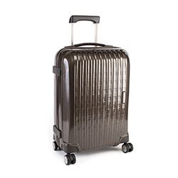 Samsonite Chronolite DLX 55 spinner in Earth