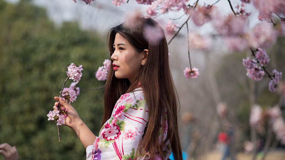 960x540-3-spring-is-in-bloom-gucun-forest-park-shanghai-bicester-village.jpg
