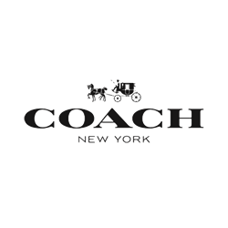Coach in Ingolstadt Village