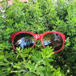 Sunglasses in red by Fossil at Ingolstadt Village