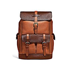 Men's Brown Hudson Backpack