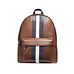 Coach Charles Backpack In Pieced Varsity Stripe