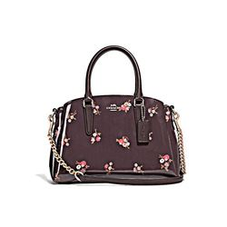 Coach Baby Bouquet Patent Sage Carryall oxblood multi