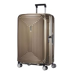 Samsonite Neopulse case