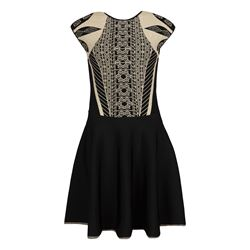 Knitted Jacquard Skater Dress
